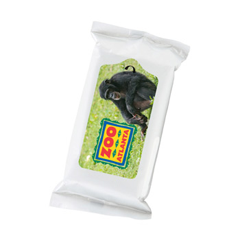 Insect Wipes Pack